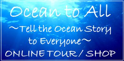 Okinawa Bluecave Online tour/Shop